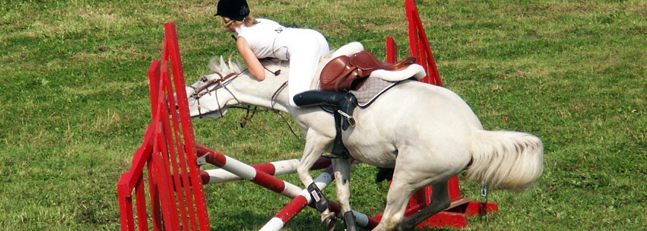 Mark Davies Injured Riders Fund