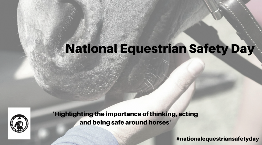 mdirf-national-equestrian-safety-day