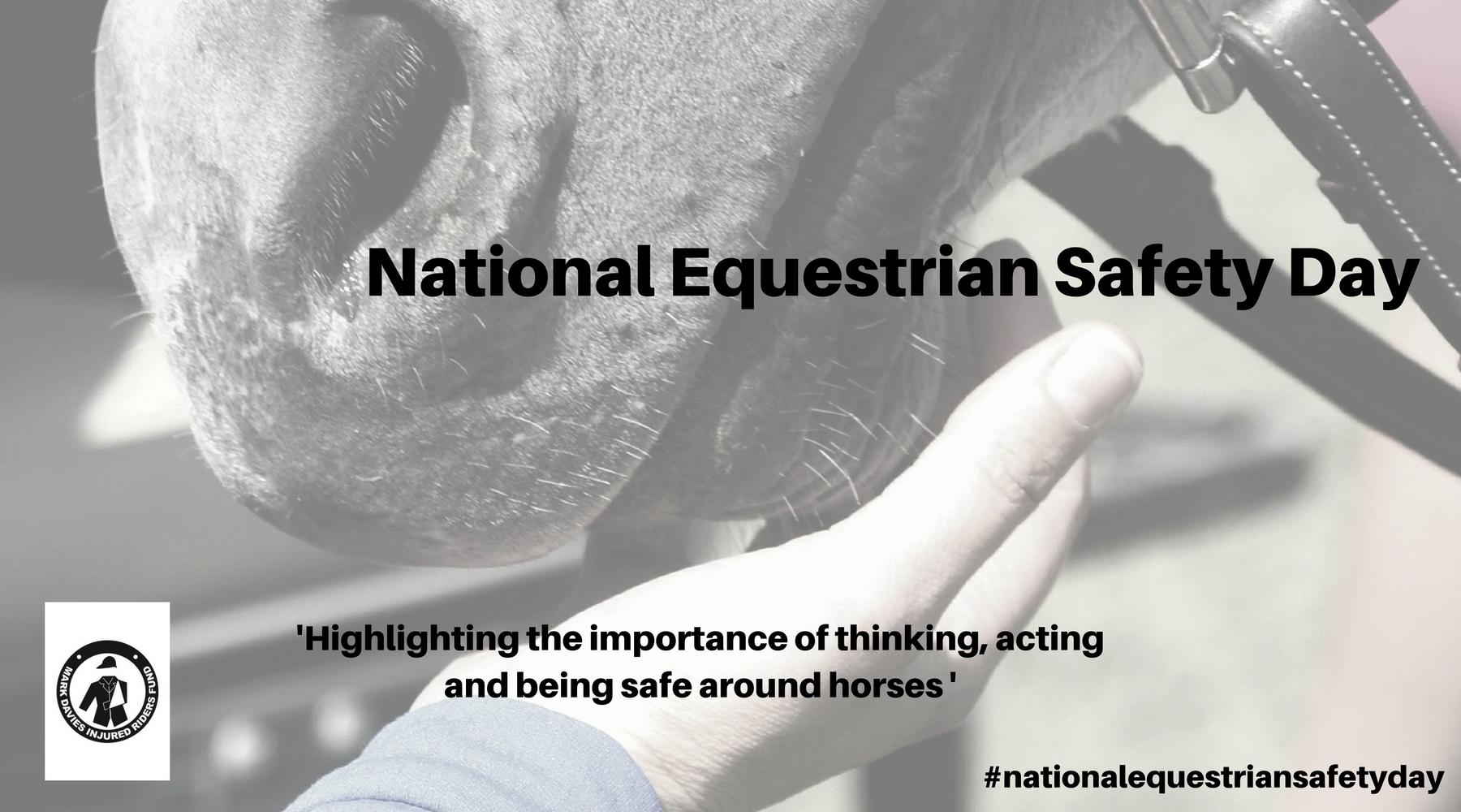 mdirf-national-equestrian-safety-day