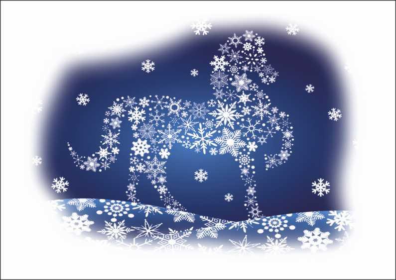 Snowflake_pl